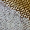 verdeckelte Honigwaben