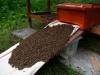 2,5 kg Bienen