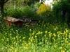 In der Bienenweide